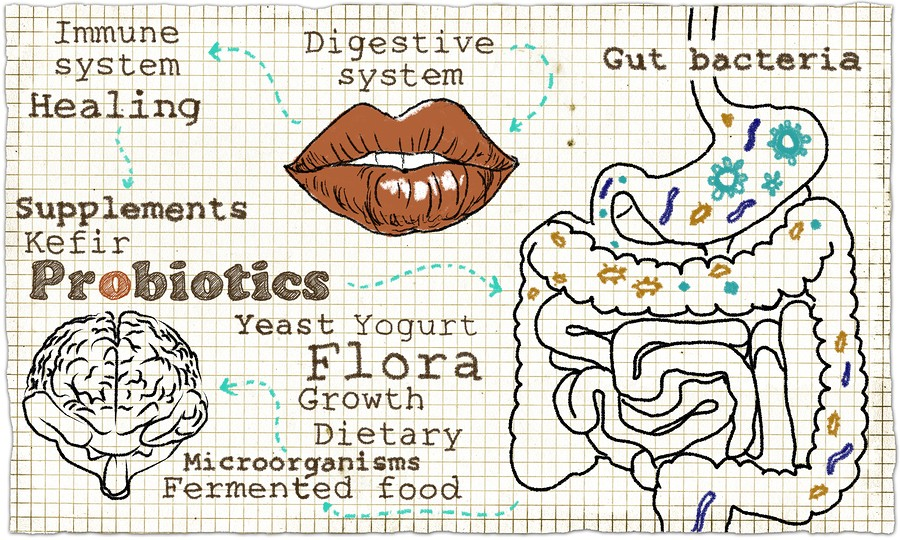 Probiotics Dos and Don'ts
