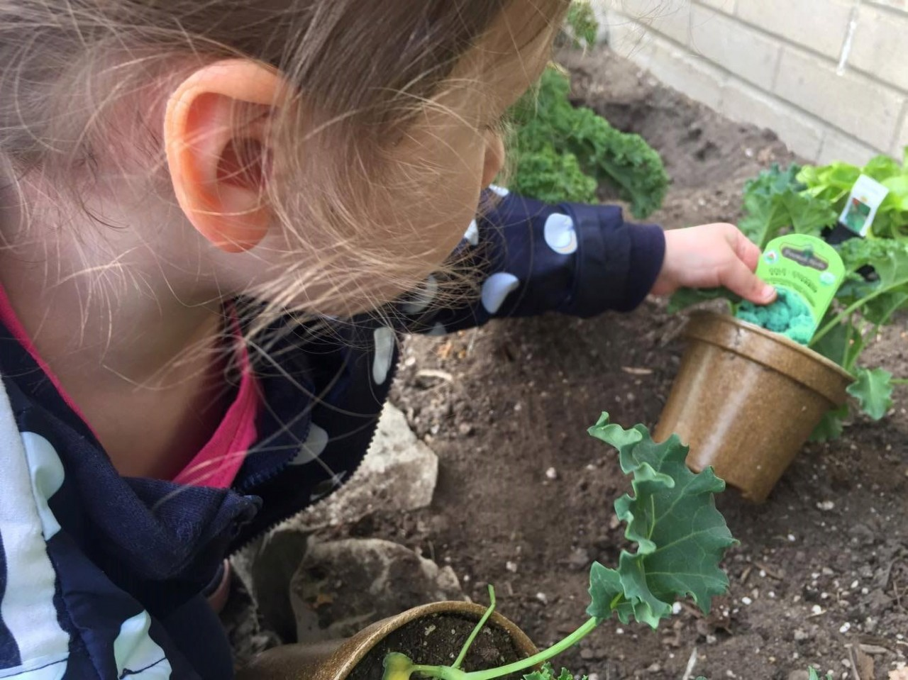 The Easiest Way to Get Kids to Eat Veggies Involves Dirt