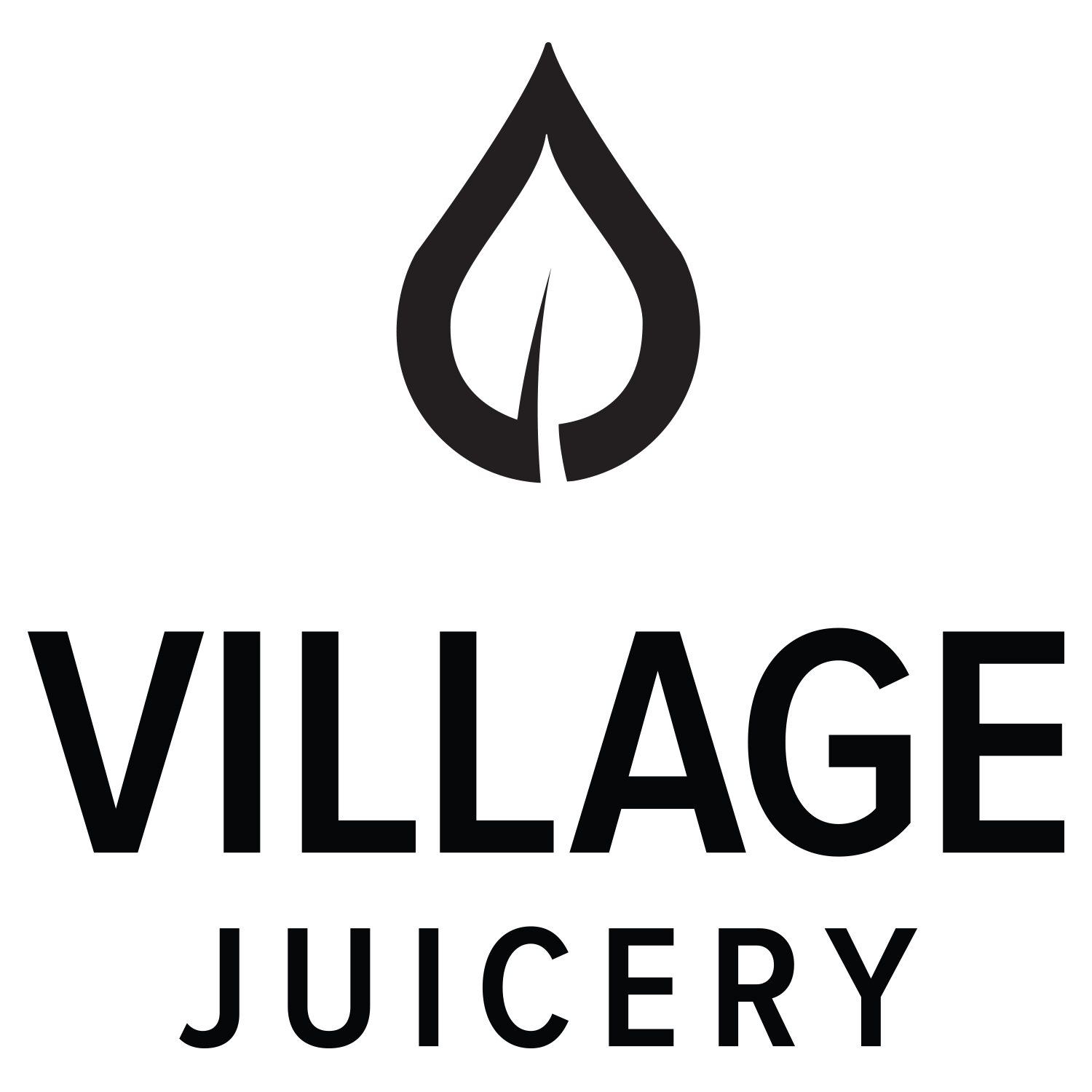 village juicery logo black